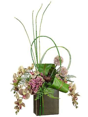 A beautiful mix of Phalaenopsis Orchids and Fern