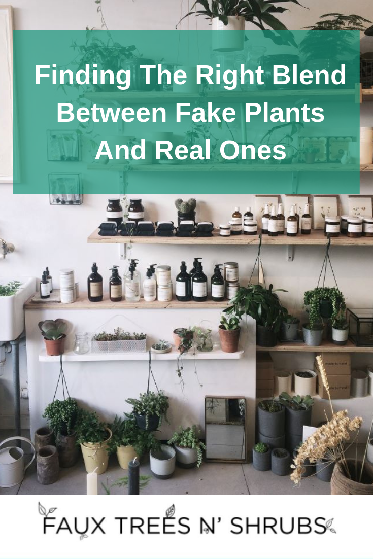 Finding The Right Blend Between Fake Plants And Real Ones