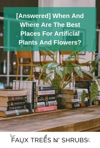 [Answered] When And Where Are The Best Places For Artificial Plants And Flowers?