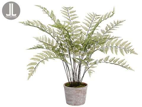 "35"" FERN IN CLAY POT GR"