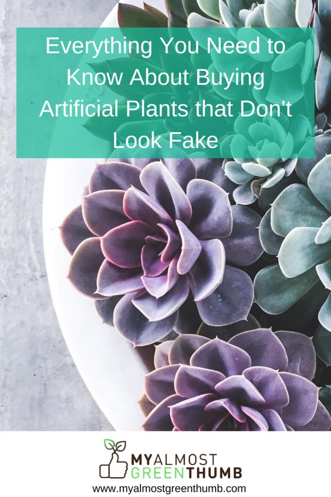 Fake Plants 101