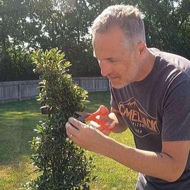Sean Trimming Topiary